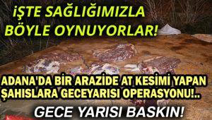 ADANA'DA BOŞ ARAZİDE AT KESİMİ YAPAN ŞAHISLARA OPERASYON!..