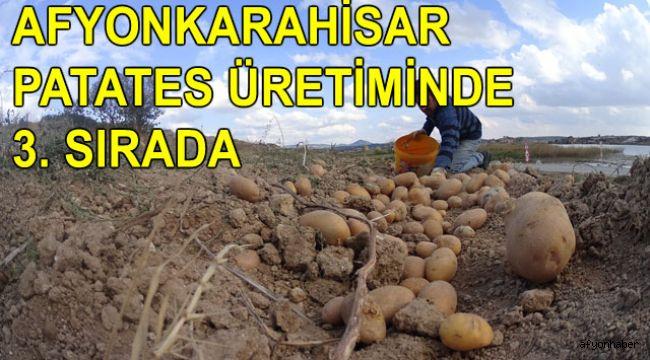 AFYONKARAHİSAR PATATES ÜRETİMİNDE 3. SIRADA