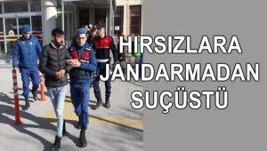 HIRSIZLARA JANDARMADAN SUÇÜSTÜ