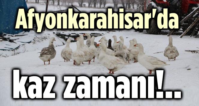 AFYONKARAHİSAR'DA KAZ ZAMANI!..