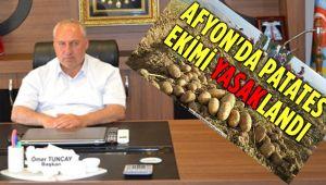AFYON'DA PATATES EKİMİ SADECE 100 DEKARLIK SINIRLI BİR ALANDA YASAKLANDI