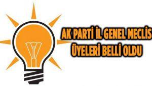 AK PARTİ İL GENEL MECLİS ADAYLARI BELLİ OLDU