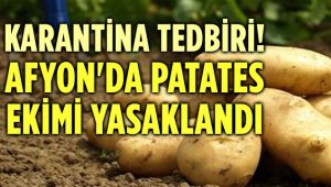 KARANTİNA NEDENİYLE AFYON'DA PATATES EKİMİ YASAKLANDI