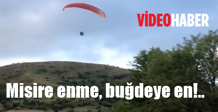 MİSİRE ENME, BUĞDEYE EN!.. | VİDEO HABER