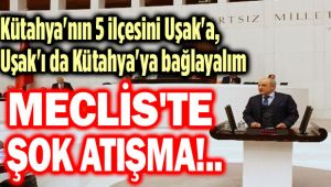 UŞAK'I KÜTAHYA'YA BAĞLAYALIM!..