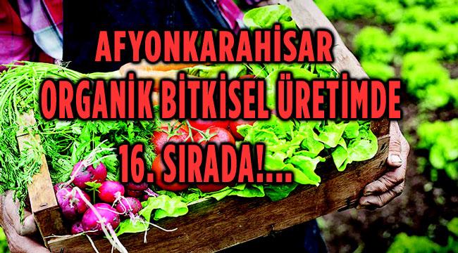 AFYONKARAHİSAR ORGANİK BİTKİSEL ÜRETİMDE TÜRKİYE'DE 16. SIRADA!