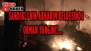 SANDIKLI'NIN AKHARIM BELDESİNDE ORMAN YANGINI