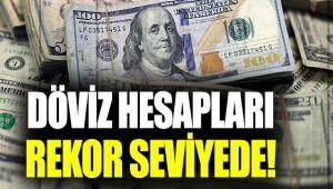 VATANDAŞIN DOLAR BİRİKİMİ REKOR KIRDI!..