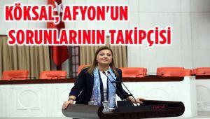 KÖKSAL, AFYON'UN SORUNLARININ TAKİPÇİSİ