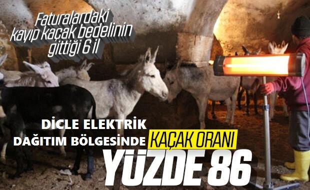 DOĞU ANADOLU'DA ELEKTRİK KAYIP KAÇAK ORANI YÜZDE 86!..