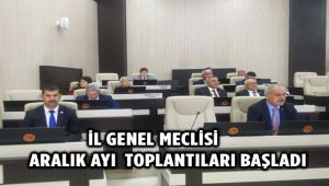 İL GENEL MECLİSİ ARALIK AYI TOPLANTILARI BAŞLADI