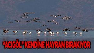 """""""ACIGÖL"""" KENDİNE HAYRAN BIRAKIYOR"""
