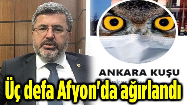 ANKARA KUŞU, 3 DEFA AFYON'DA AĞIRLANDI!..