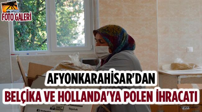 AFYONKARAHİSAR'DAN BELÇİKA VE HOLLANDA'YA POLEN İHRACATI