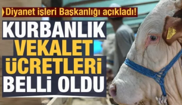 DİYANET'İN KURBAN BEDELLERİ BELLİ OLDU