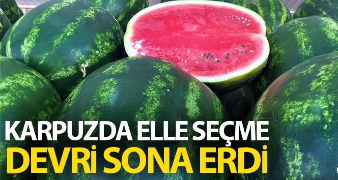 KARPUZDA ELLE SEÇME DÖNEMİNE SON!..