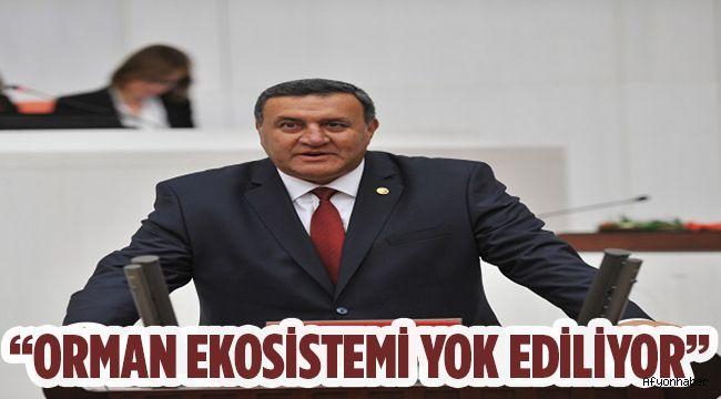 """""""ORMAN EKOSİSTEMİ YOK EDİLİYOR"""""""
