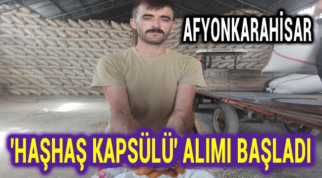 AFYONKARAHİSAR'DA 'HAŞHAŞ KAPSÜLÜ' ALIMI BAŞLADI