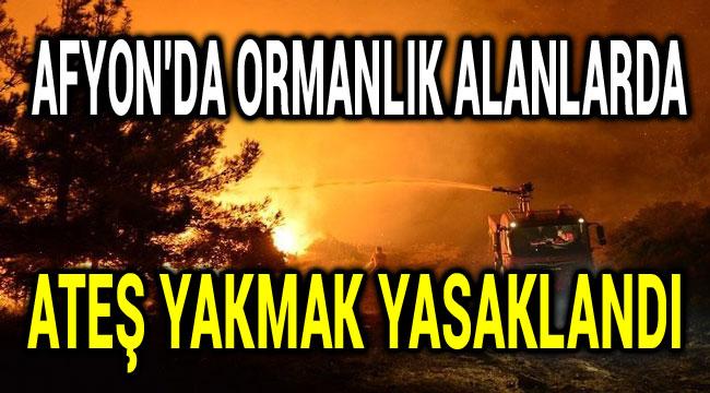 AFYON'DA ORMANLIK ALANLARDA ATEŞ YAKMAK YASAKLANDI
