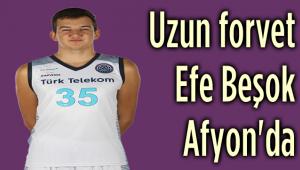 EFE BEŞOK, HDI SİGORTA AFYON BELEDİYE'DE