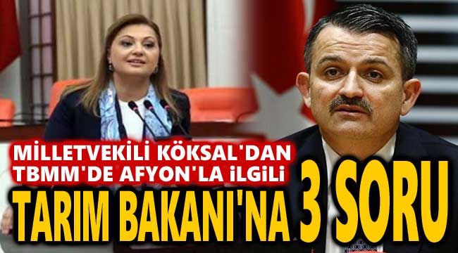MİLLETVEKİLİ KÖKSAL'DAN TARIM BAKANI'NA 3 SORU