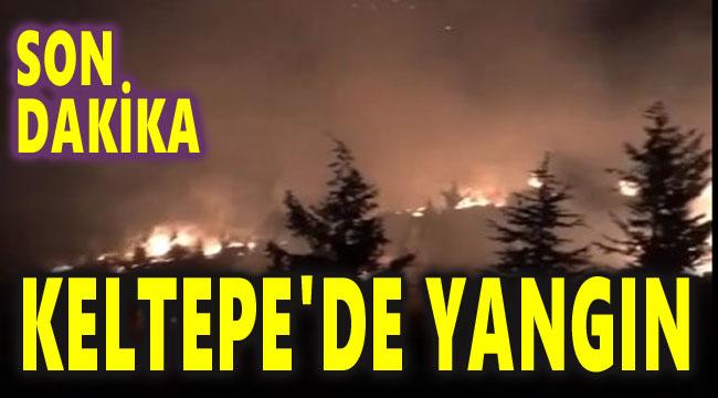 SON DAKİKA!.. KELTEPE'DE ORMAN YANGINI ÇIKTI!..