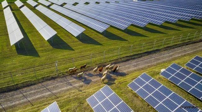 Esenboğa Elektrik, Afyon'dan 11 GES'i satın aldı