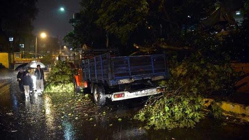 Fırtına ağaçları devirdi, o mahalle elektriksiz kaldı!..