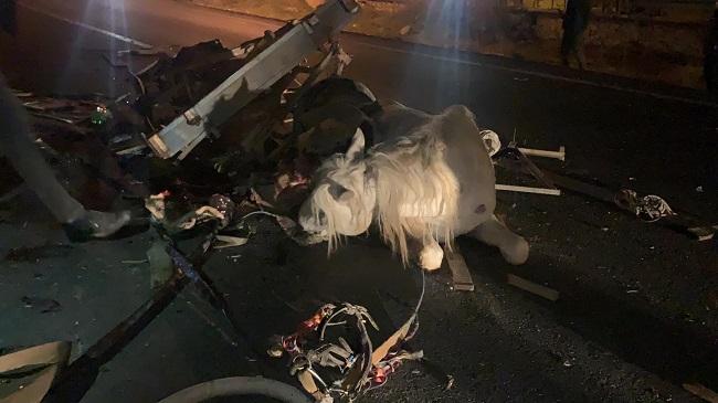 Afyon son dakika!.. Otomobil at arabasına çarptı, 1 kişi öldü