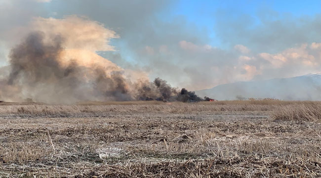 Eber Gölü'nde yangın çıktı