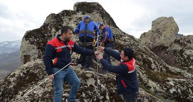 Kayalıklarda mahsur kalanyaralı köpek AFAD ekiplerince kurtarıldı