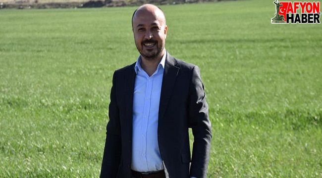 Bahar geldi, Dazkırı Belediyesinin tarlaları da yeşermeye başladı