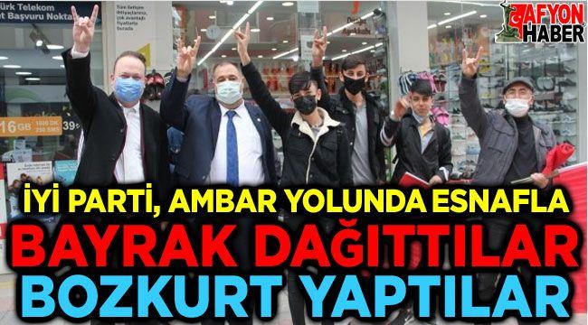 İYİ Partililer bayrak dağıttı, bozkurt yaptı!..