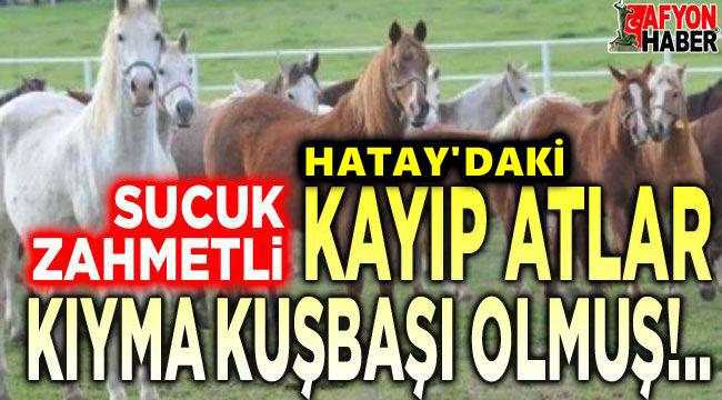 Kayıp atlar, kıyma kuşbaşı olmuş!..