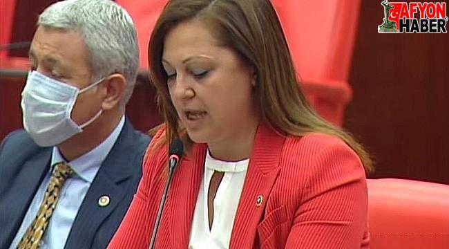 Milletvekili Köksal, Dinar'a bağlı köylerin sorunlarını Meclis'e taşıdı