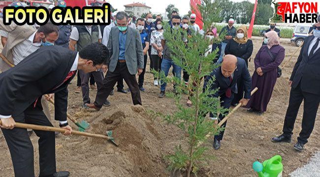 Bakan Kurum'un telekonferans katılımıyla Şuhut Millet Bahçesinde ilk fidan dikildi