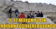 AFYONKARAHİSAR'DA 9-12 MİLYON YILLIK HAYVAN FOSİLLERİ BULUNDU