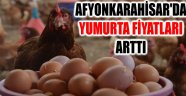AFYONKARAHİSAR'DA YUMURTA FİYATLARI ARTTI