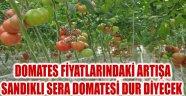 DOMATES FİYATLARINDAKİ ARTIŞA SANDIKLI SERA DOMATESİ DUR DİYECEK