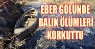 EBER GÖLÜNDE BALIK ÖLÜMLERİ KORKUTTU