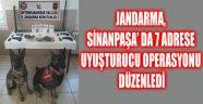 JANDARMA, SİNANPAŞA' DA 7 ADRESE UYUŞTURUCU OPERASYONU DÜZENLEDİ