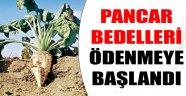 PANCAR BEDELLERİ ÖDENMEYE BAŞLANDI