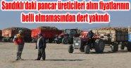 """PANCAR ÜRETİCİLERİNİN """"POLAR"""" SIKINTISI"""