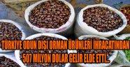 TÜRKİYE ODUN DIŞI ORMAN ÜRÜNLERİ İHRACATINDAN 507 MİLYON DOLAR GELİR ELDE ETTİ...