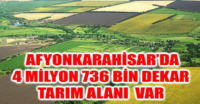 AFYONKARAHİSAR'DA 4 MİLYON 736 BİN DEKAR TARIM ALANI  VAR