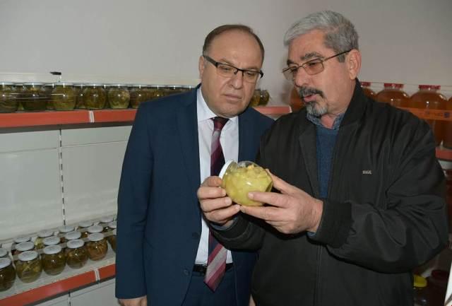 VALİ TUTULMAZ DİNAR'DA İNCELEMELERDE BULUNDU