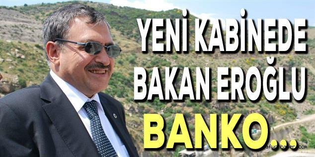 YENİ KABİNEDE, ORMAN VE SU İŞLERİ BAKANI EROĞLU BANKO OLACAK!..